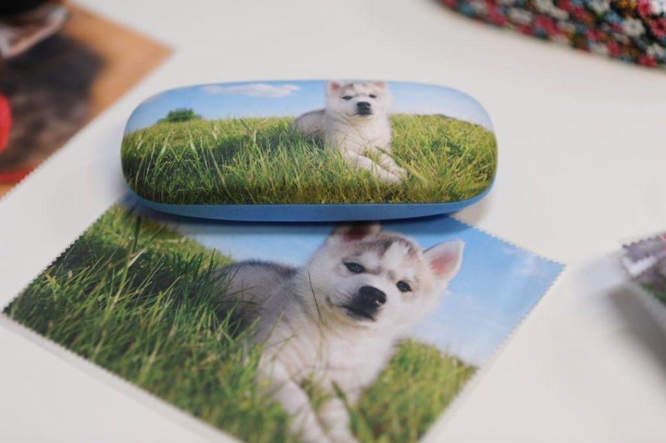 Dětské pouzdro nabrýle štěně pes