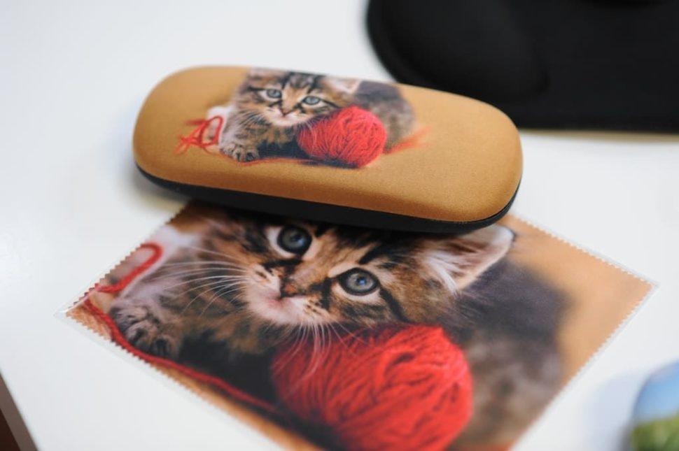 Dětské pouzdro nabrýle kotě